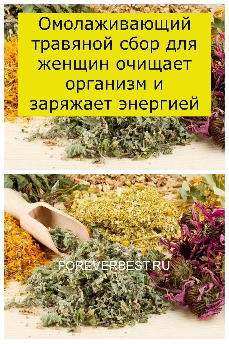 Омолаживающий травяной сбор для женщин очищает организм и заряжает энергией