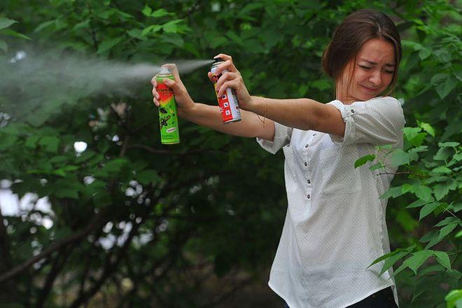 7 запахов, которые отпугнут комаров 1