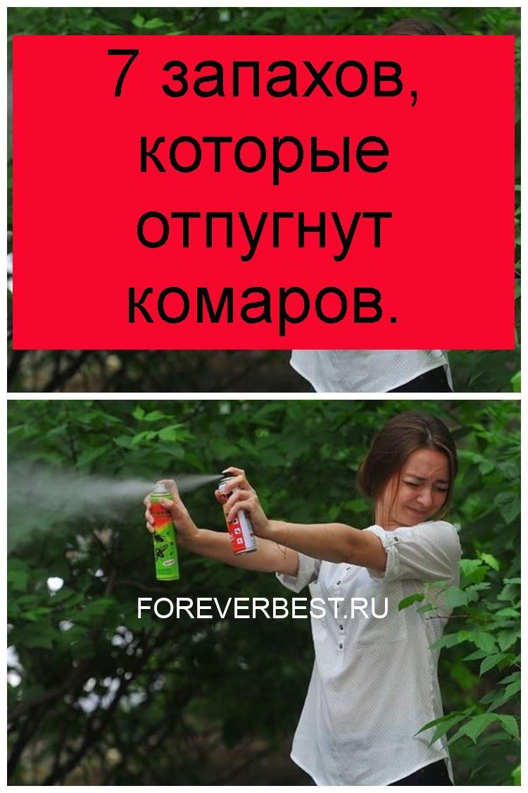 7 запахов, которые отпугнут комаров 4