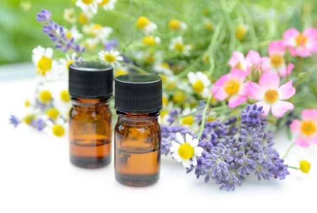 7 запахов, которые отпугнут комаров 6